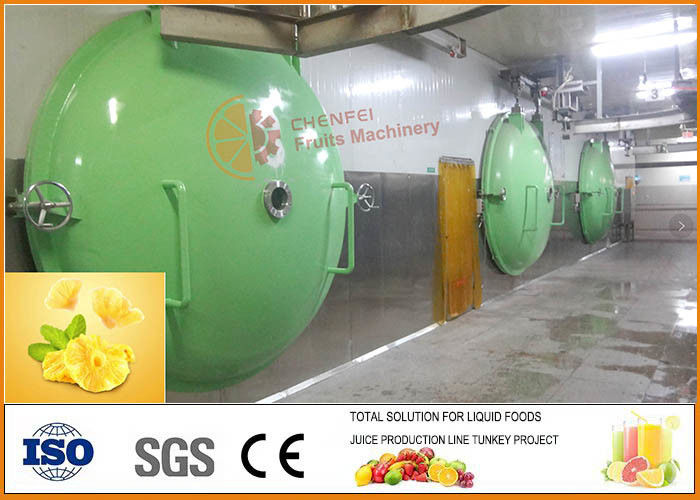 SS304 Turnkey Pineapple Processing Machinery CFM-PL-03-22T CE Certification